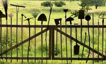 Best garden tools: Here's how to cultivate the equipment you need to nurture what you plant