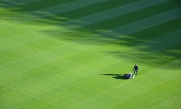 Best push mower: The grass is always greener where you use our lawn maintenance recommendations