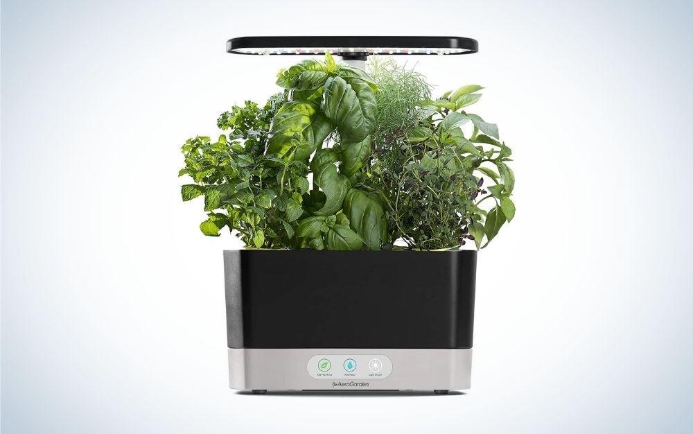 Black Harvest indoor hydroponic garden graduation gift for him