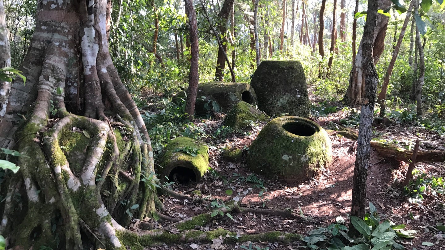 Megalithic jars in a Laos forest