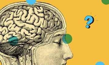 Ask Us Anything: What happens in your brain when you daydream?