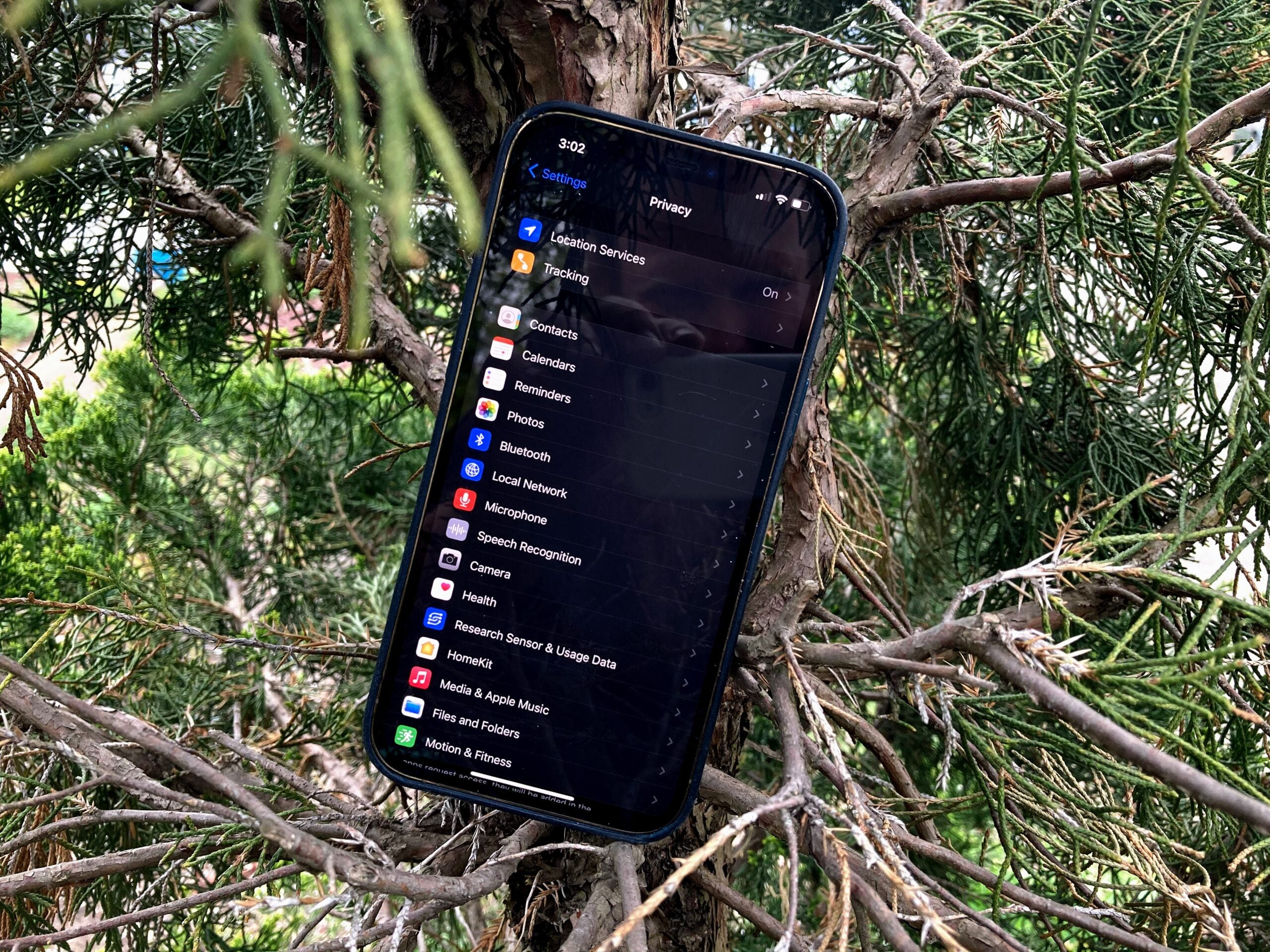 iPhone in a tree on the security tab