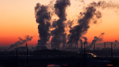 Tiny air pollutants may come from different sources, but they all show a similar biased trend