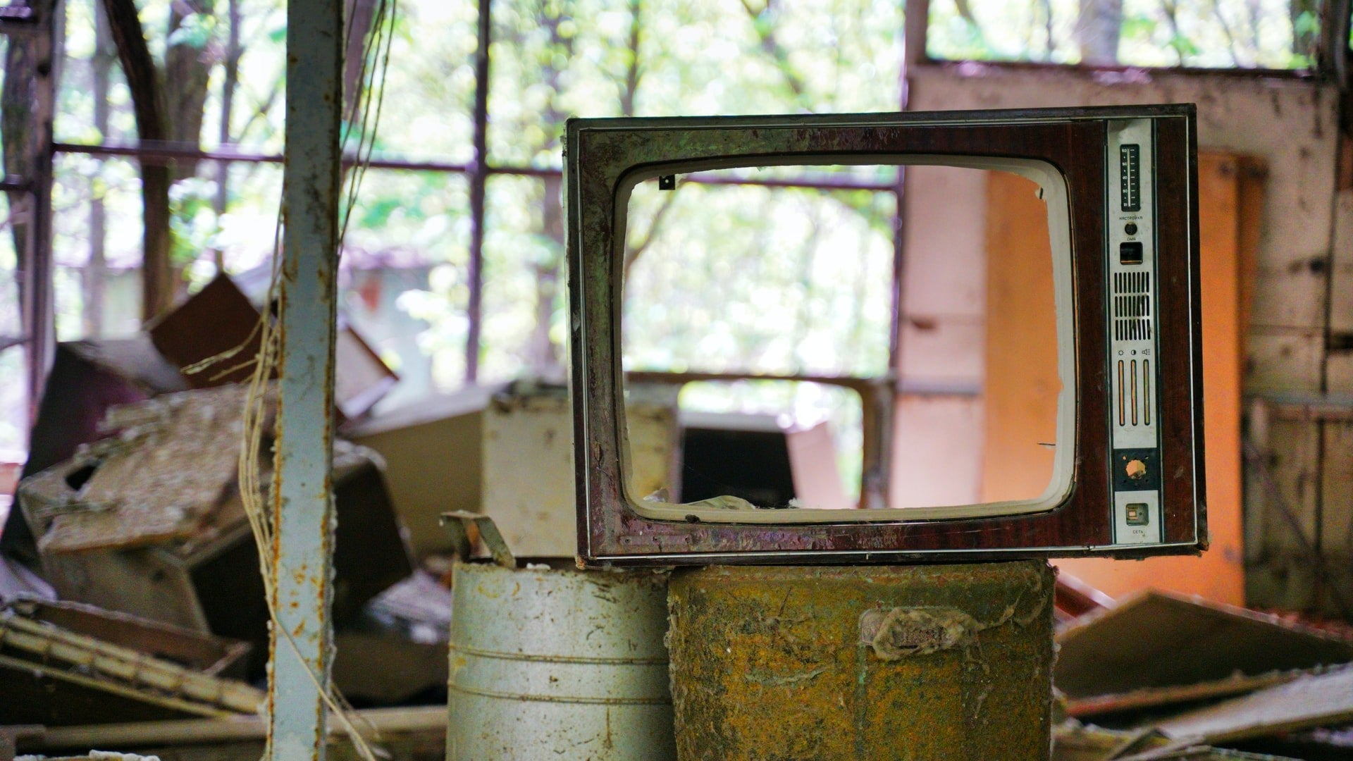 An empty TV frame overlooks a forest growing in Chernobyl, Ukraine.