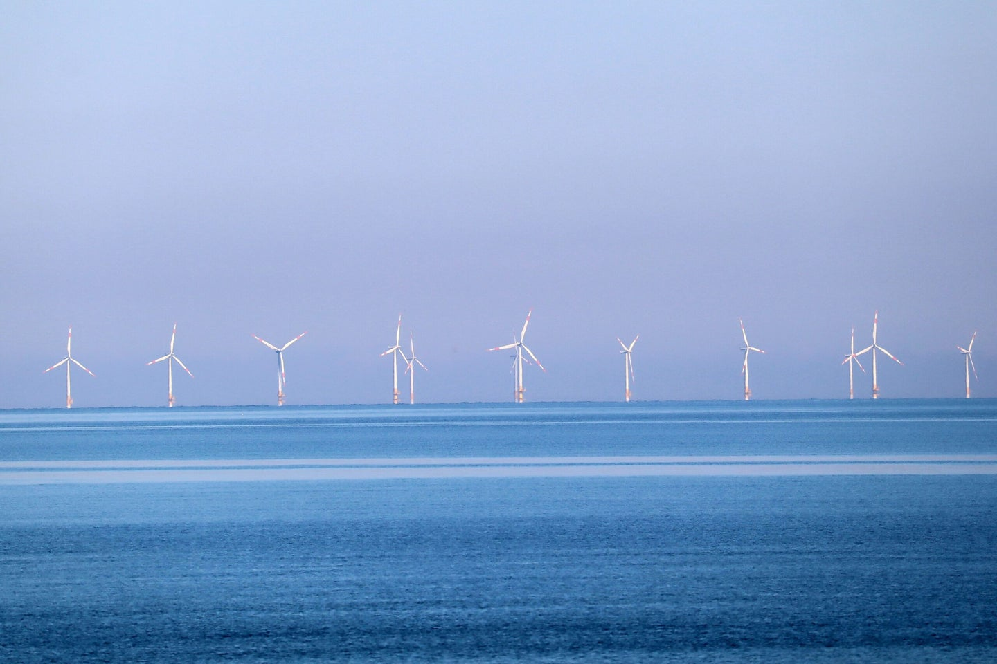 rows of offshore wind turbines