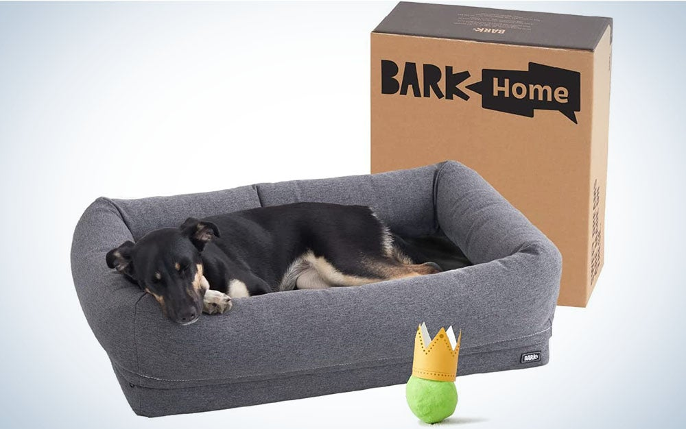 BarkBox Memory Foam Dog Bed is the best calming dog bed.