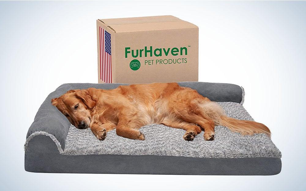 Furhaven Orthopedic CertiPUR-US Certified Foam Pet Bed is the best orthopedic dog bed.