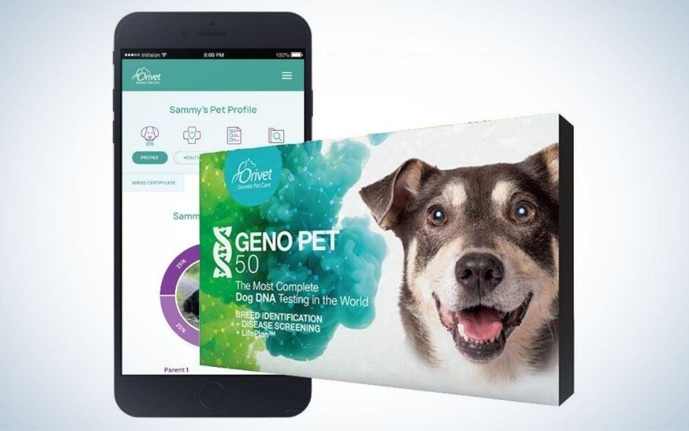 Breed test kit, dog DNA test