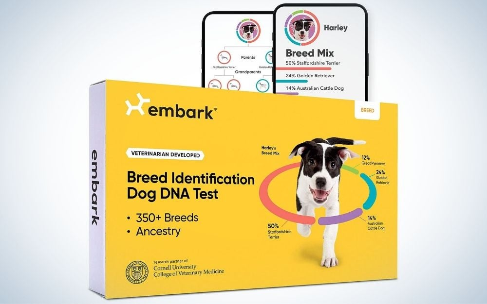 Breed identification kit, DNA test for dogs