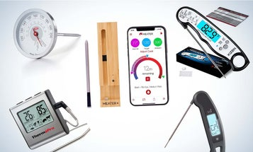 The best meat thermometers for any cook