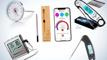 The best meat thermometers of 2021.