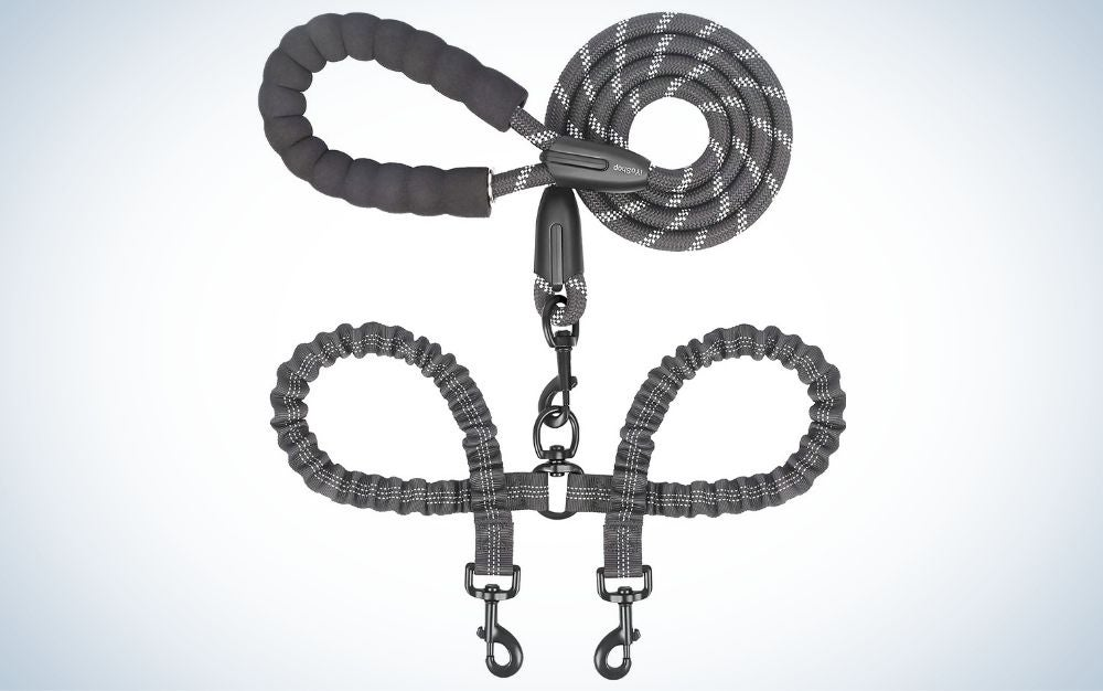 Gray double dog leash for two dogs