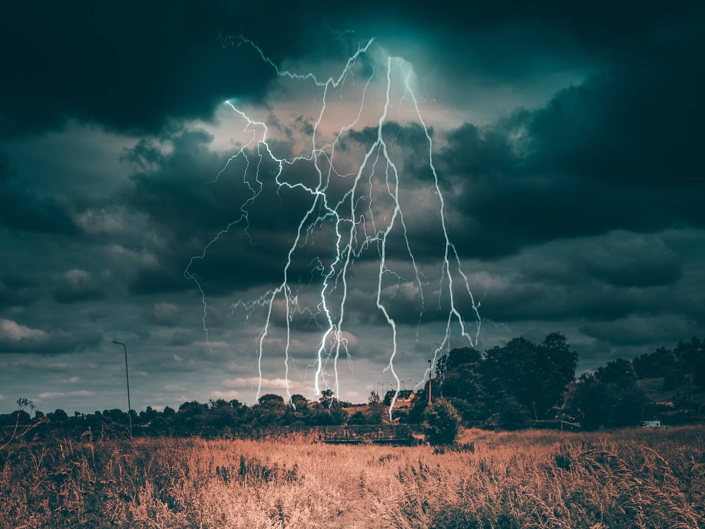 lightning bolt in the middle of the countryside