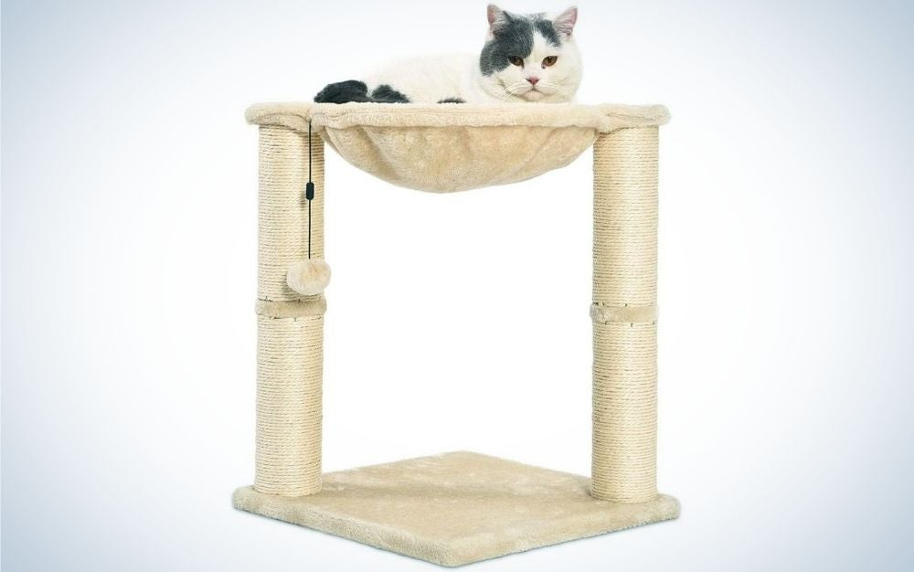 A cat sitting over a cat tree in a beige color and with two floors.