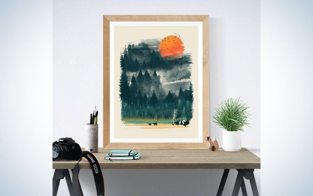 A painted picture over a wooden desk with a plant and a professional camera into it.