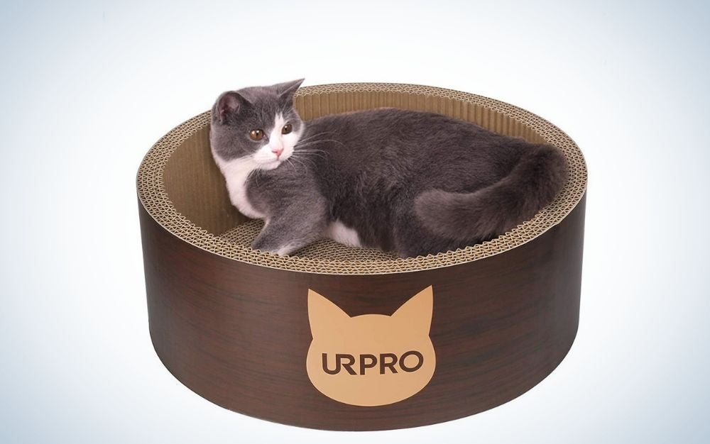 A cat on a URPO scratching post bed on a round shape