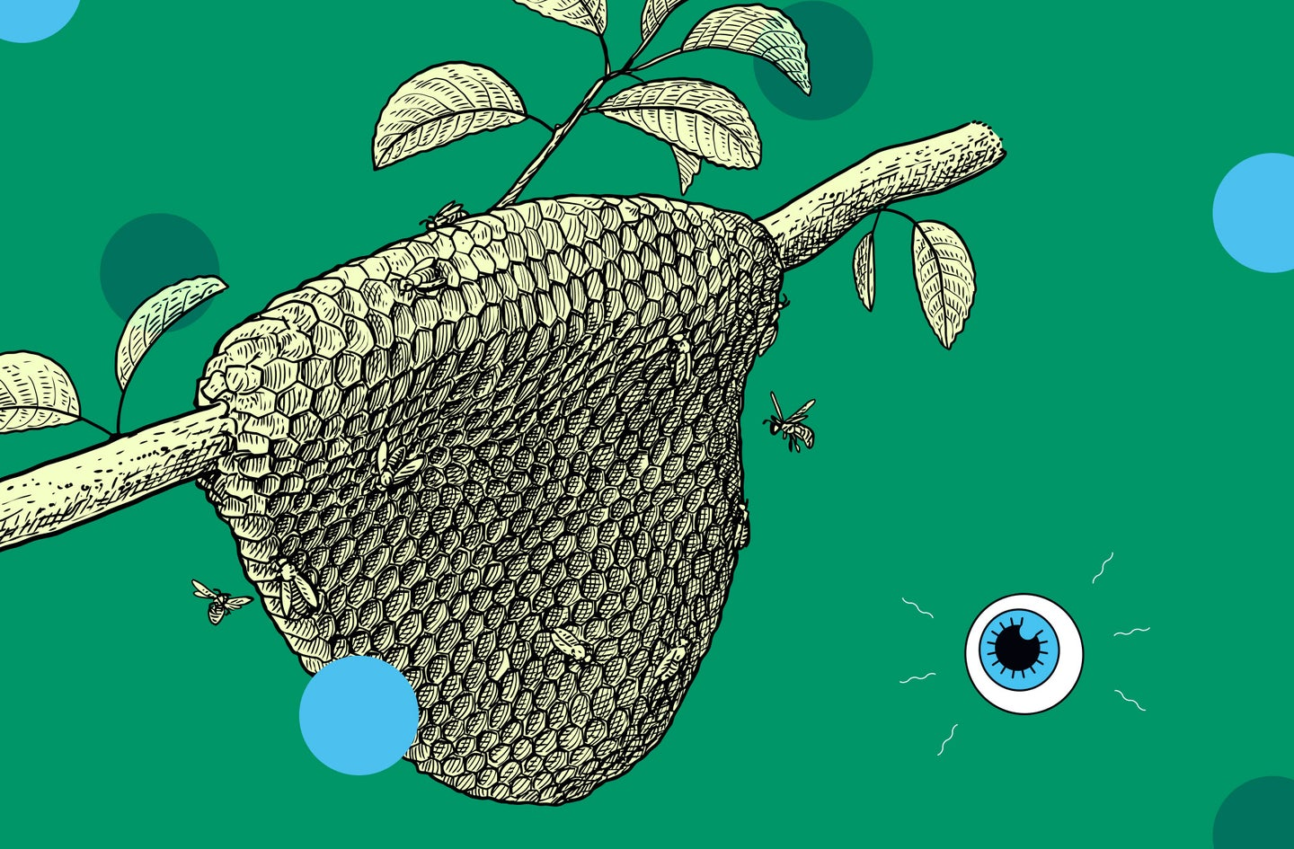 an illustration of a bee hive on a tree branch against a green background with a small drawing of an eyeball logo