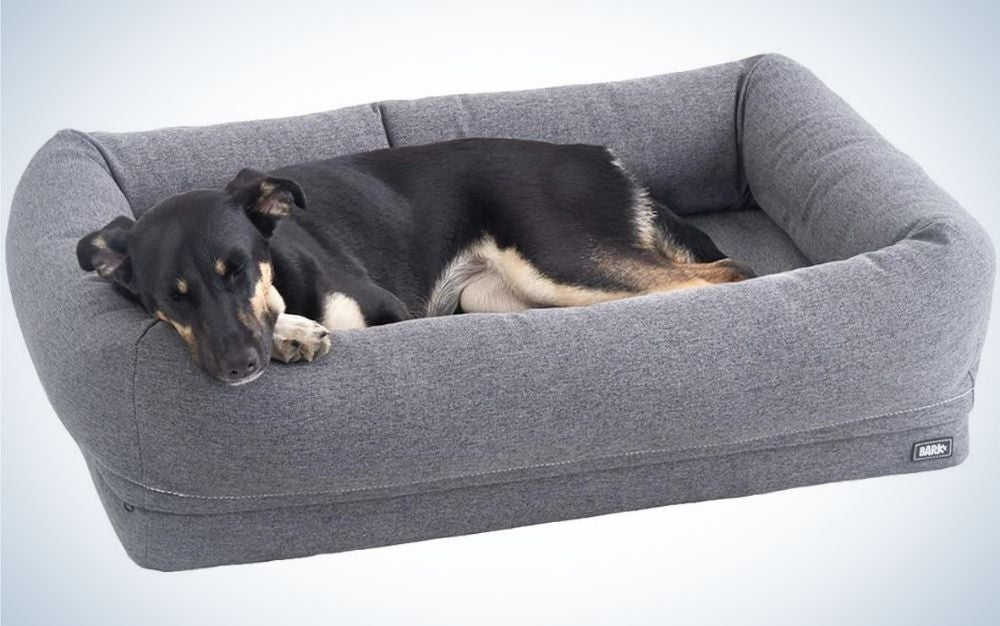 A black dog who sleeps peacefully on his gray bed with raised sides to serve as support for the dog.