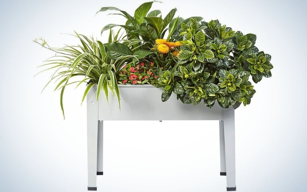 A gray garden bed structure in the shape of a four-legged table, full of green flowers.