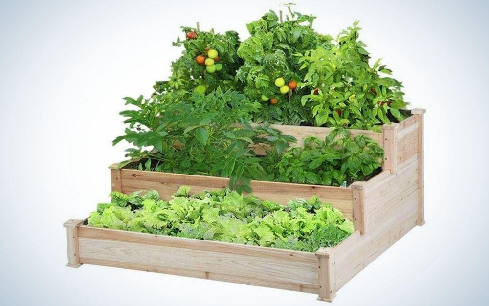 A wooden garden bed structure in the shape of three steps and it is full of green flowers in it.