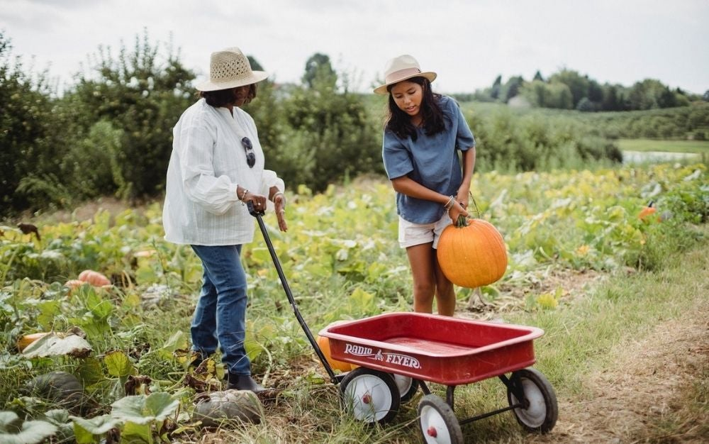 Two woman with hats being in a green field, one with a yellow pumpkin in her hands and the other one with a small wheelbarrow pushing it.