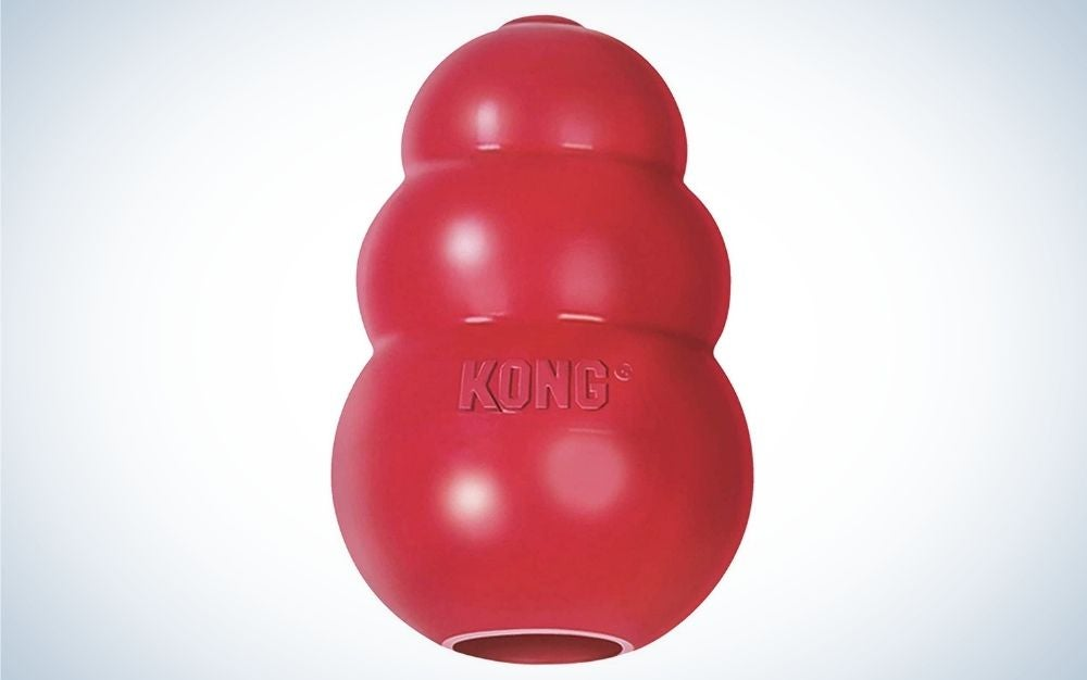 Red, rubber, classic Kong dog toy for chewing and chasing