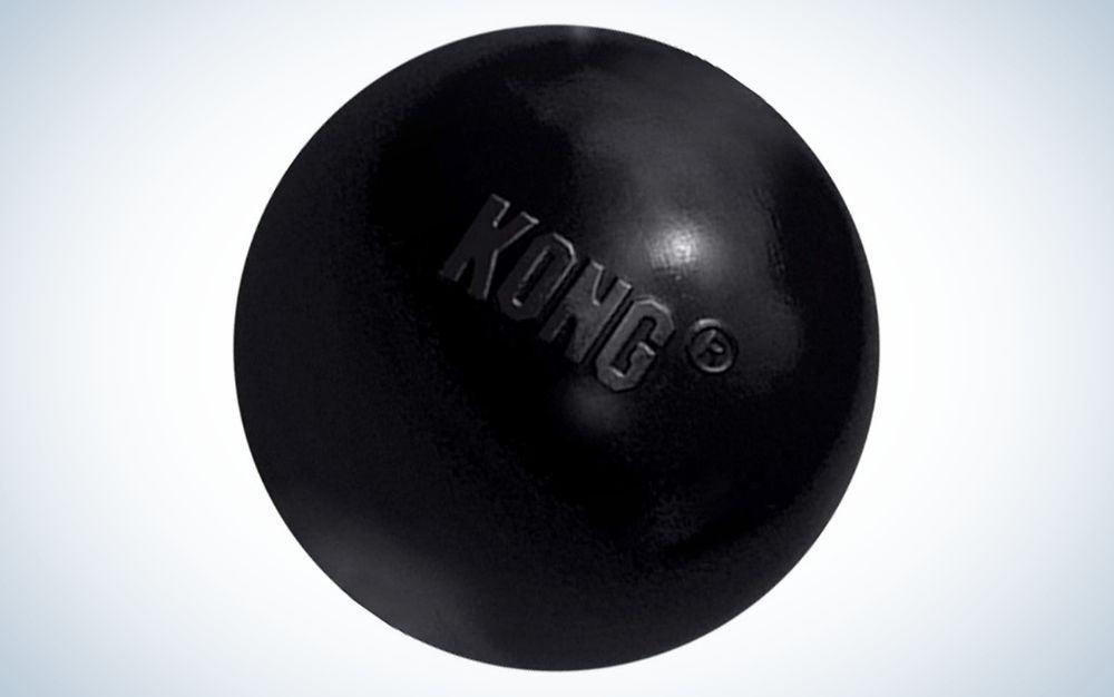Black, rubber Kong ball dog toy