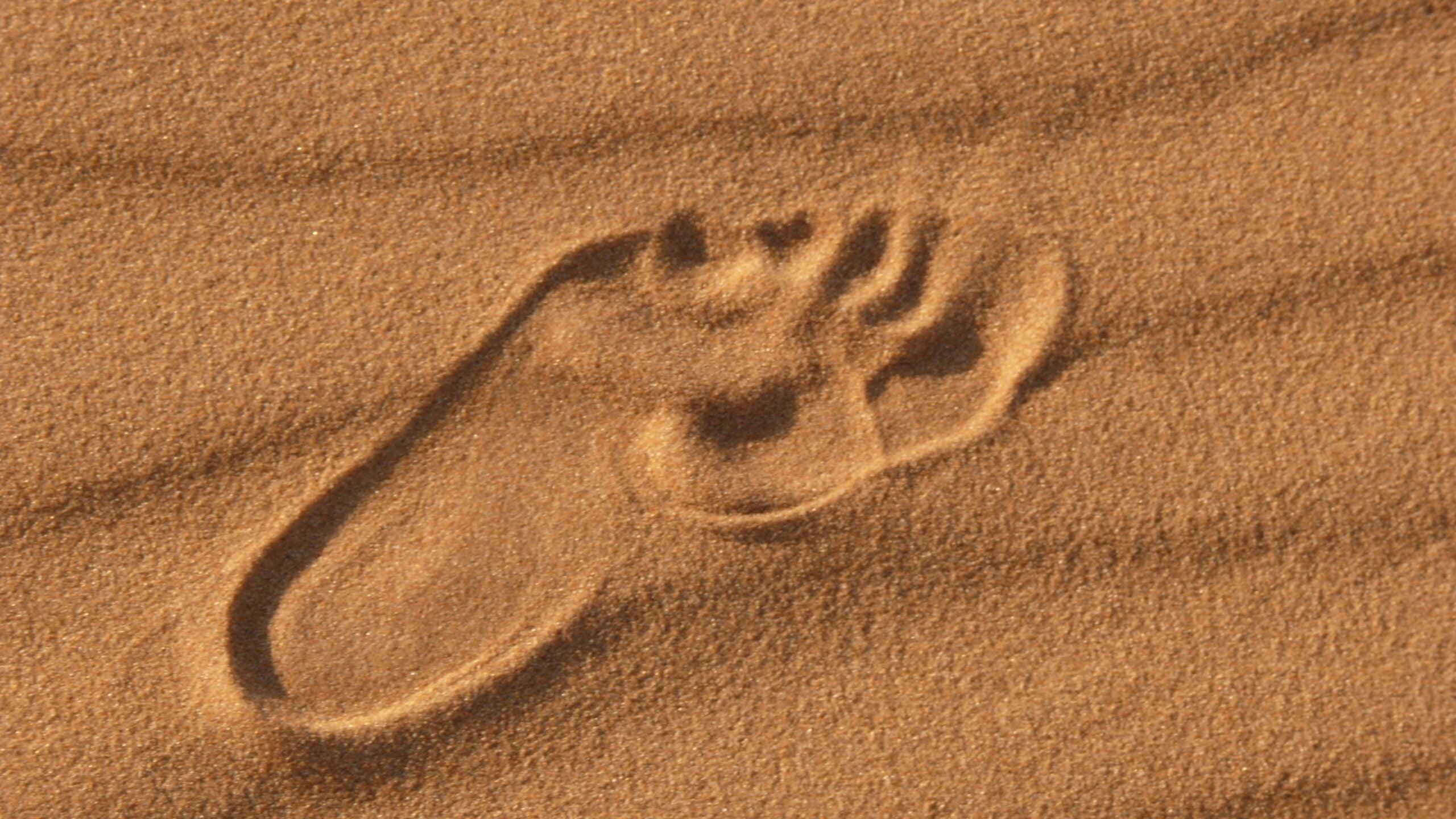 footprint in desert sand