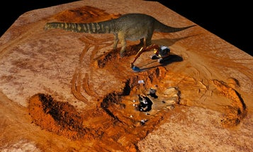 This Australian behemoth is officially the largest dinosaur on the continent