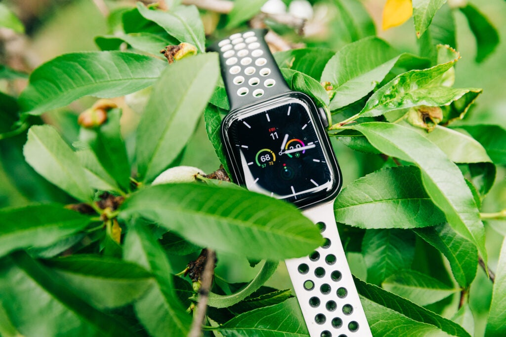 apple watch series 6 on tree branches