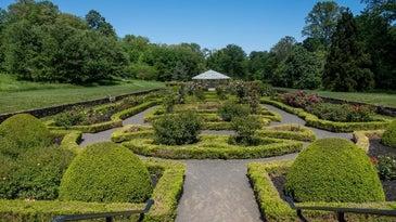 public garden hedge trimmers