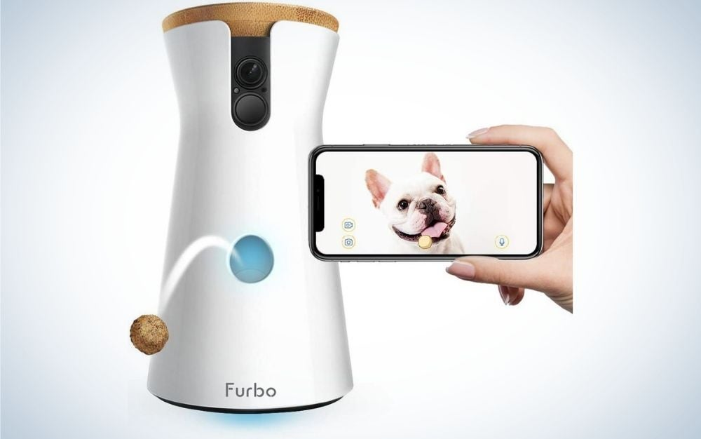 Furbo Dog Camera is the best treat-tossing dog camera.