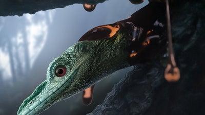 This fossil isn't a hummingbird-sized dinosaur, but an unusual lizard
