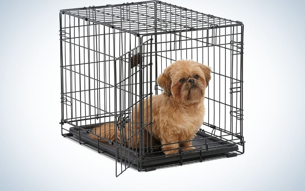 A small brown dog that sits and is positioned in a metal dog cage and visible from the outside.