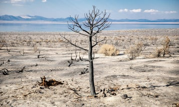 What you need to know about the heatwave and drought scorching the western US