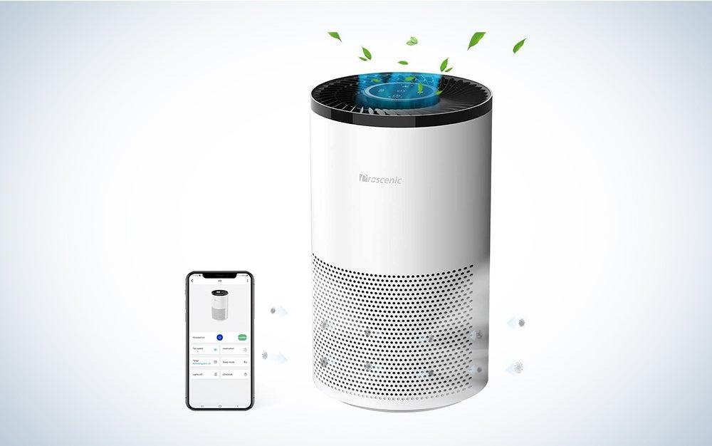 prosenic air purifier deal