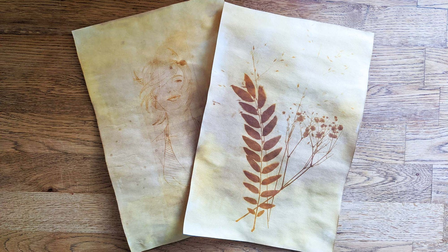 Anthotype images on wooden table