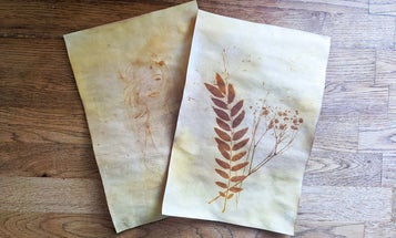 Spice up your art with turmeric, sunlight, and a 19th century photography technique