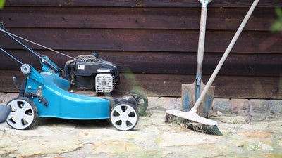 It's time to rip up your lawn and replace it with something you won't need to mow