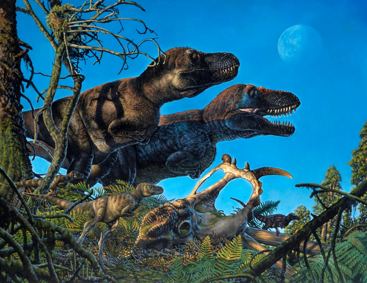 The real Jurassic Park may have been in the Arctic