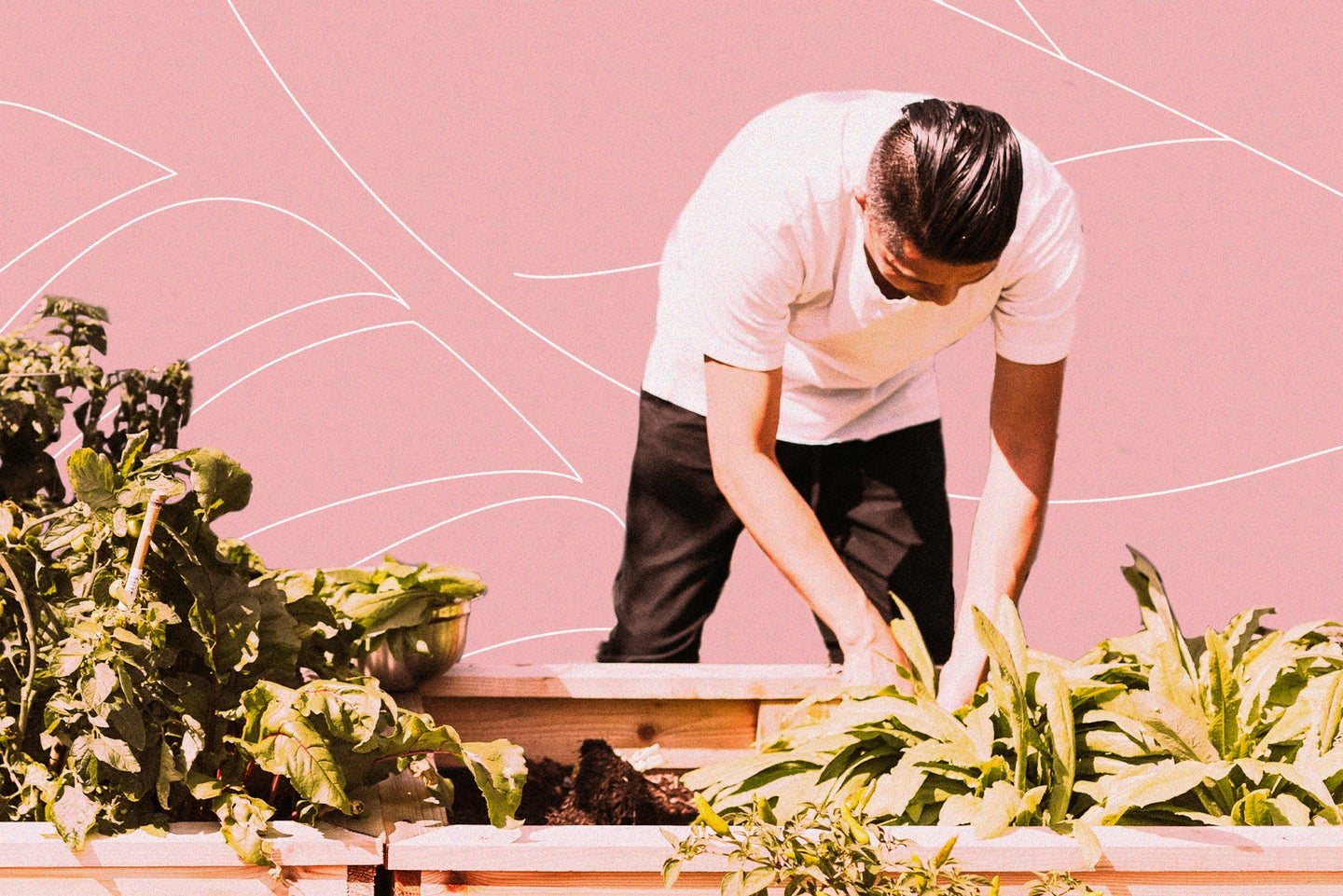 A person gardening in a wooden planter box.
