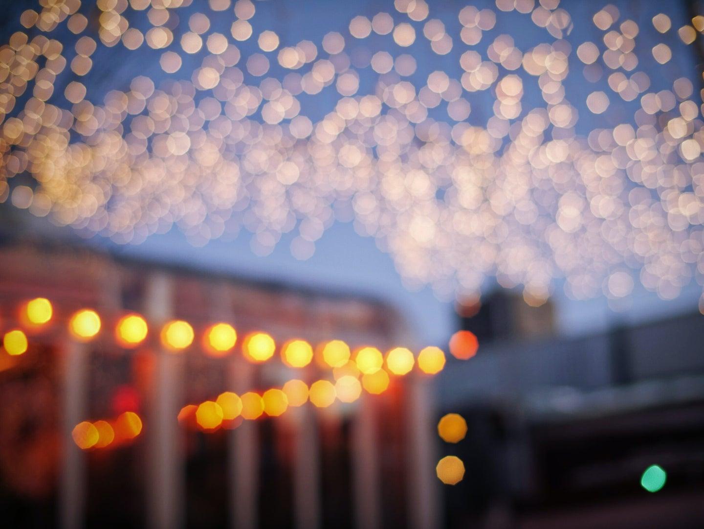 outdoor garden with twinkle lights