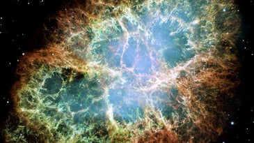 An image of the Crab Nebula