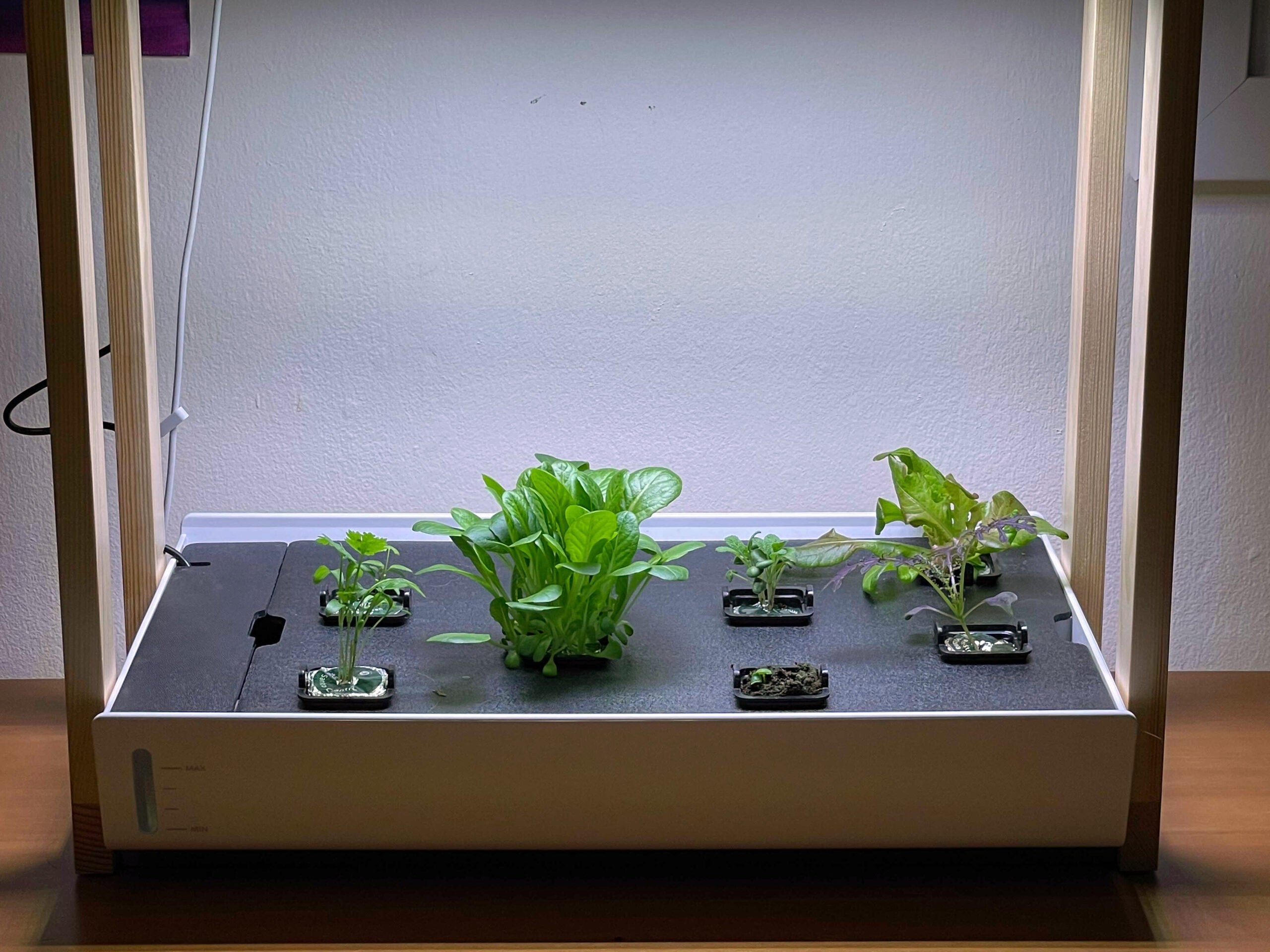 Personal Rise Garden sprouting seed pods