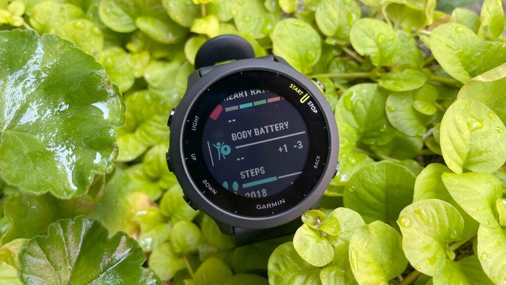 Garmin Forerunner 55 smartwatch in plants