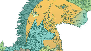 illustration of wild horse, wolf, beaver, and frog