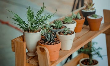 The best potting bench to make gardening fun and easy
