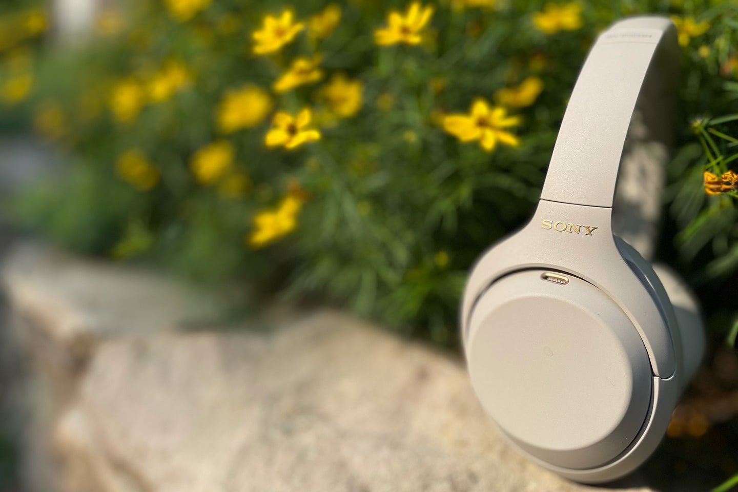 Sony WH-1000XM4 from the side with yellow flowers