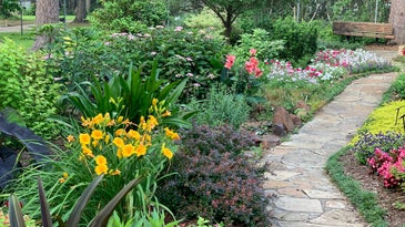 Yard garden with flowers, shrubs, bushes and trees.