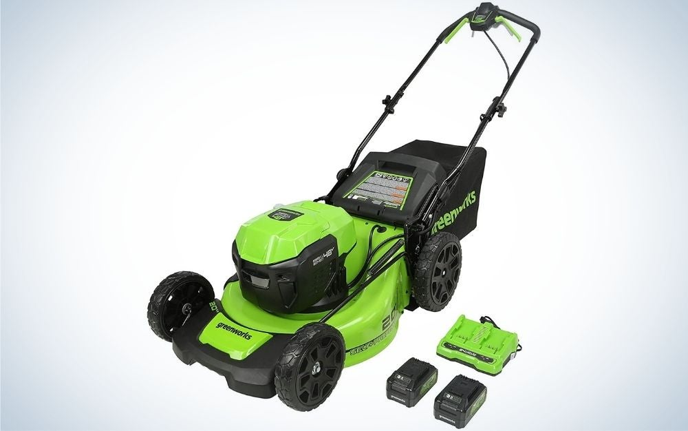 The Greenworks Self-Propelled Electric Lawn Mower is the best for suburbanites.